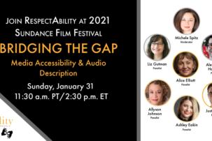 """Bridging the Gap"" – Media Accessibility & Audio Description"