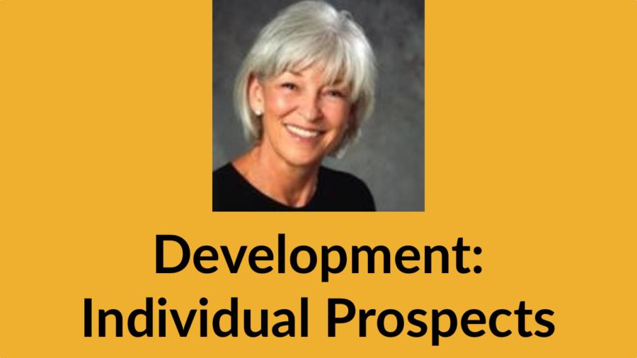Vicki Agron smiling headshot. Text: Development: Individual Prospects